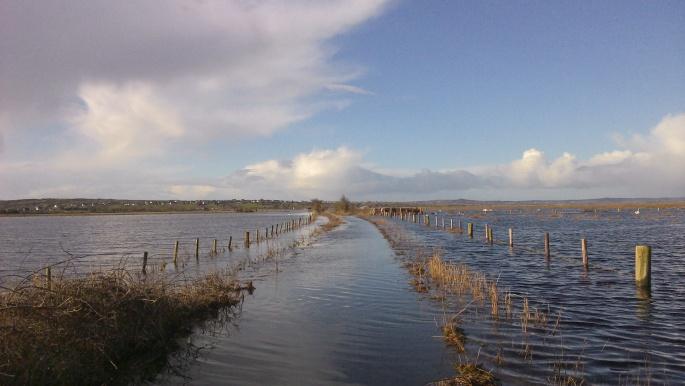 Walking near Galway!